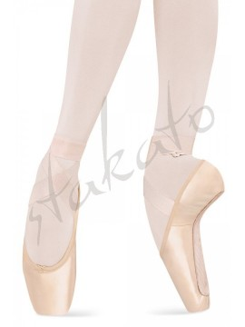 Sheer Stretch Ribbon Bloch