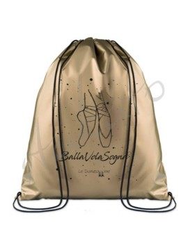 Metallic sport bag LD