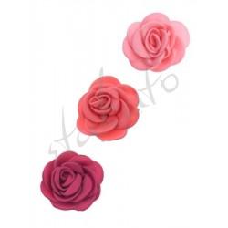 Róża dekoracyjna mała