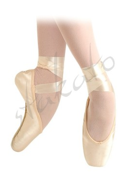 Grishko 2007 pointe shoes with ties, elastics and protectors