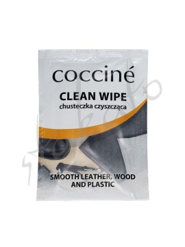 Clean Wipe for shoes